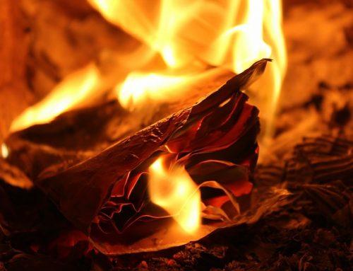 Письменниця Джанет Вінтерсон спалила стос своїх книг на знак протесту