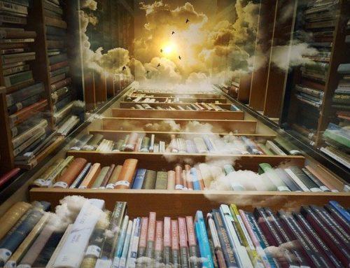 Книгарні, у яких хочеться провести півжиття
